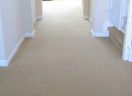This is 10 year old carpet that we've been maintaining since 2009. Would yo believe that 4 boys live here?!